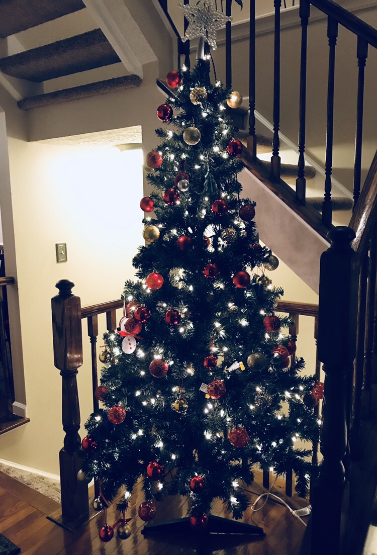 How long do you wait before you take down your Christmas Tree?