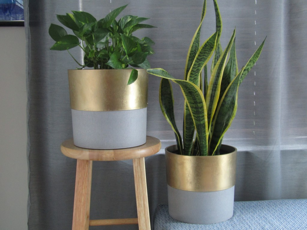 how to make a mid century plant stand. Things you need to know before making a mid century plant stand. DIY Mid century plant stand.